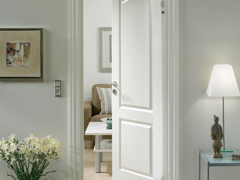 двери с филенкой фото