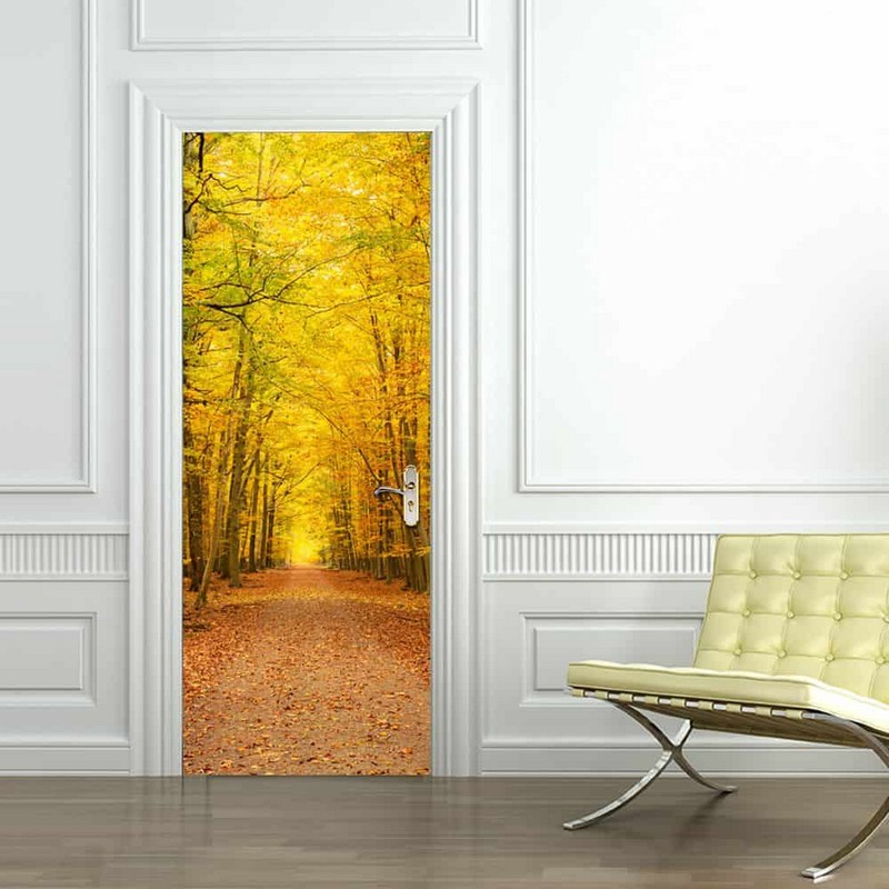 рисунки на межкомнатных дверях фото