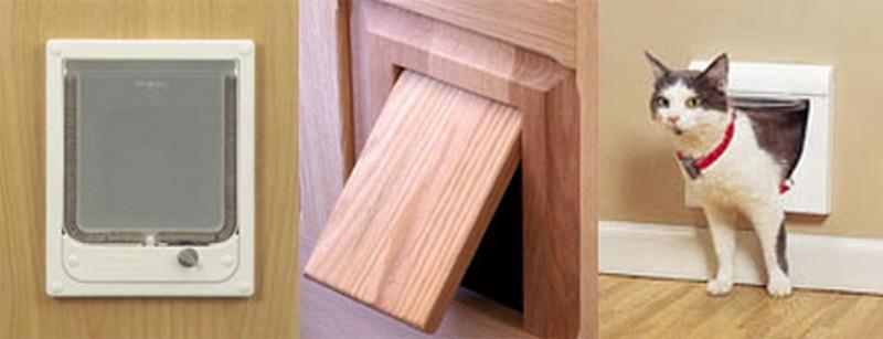 дверь для кошки фото