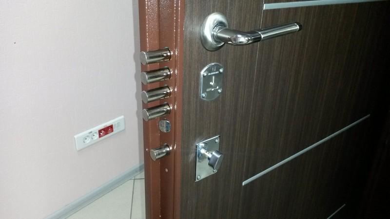 лучшие входные металлические двери фото